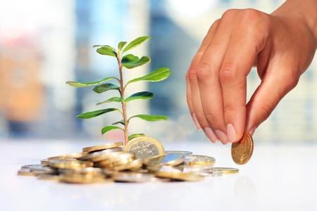 大化け期待の成長株、上放れに付く